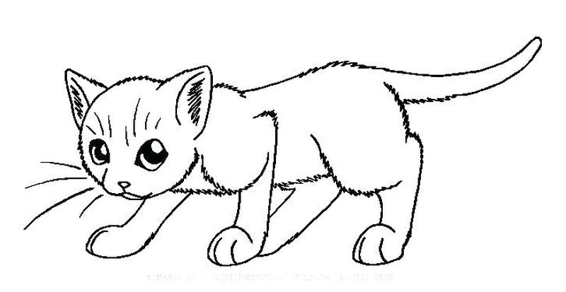 Colouring Pages Of Cats And Dogs