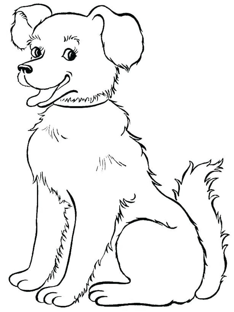 Colouring Pages Of Dogs And Cats