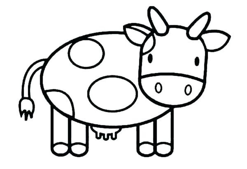 Cow Coloring Pages Already Colored