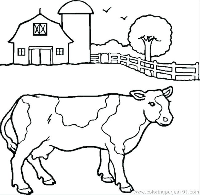 Cow Coloring Pages For Kids To Print