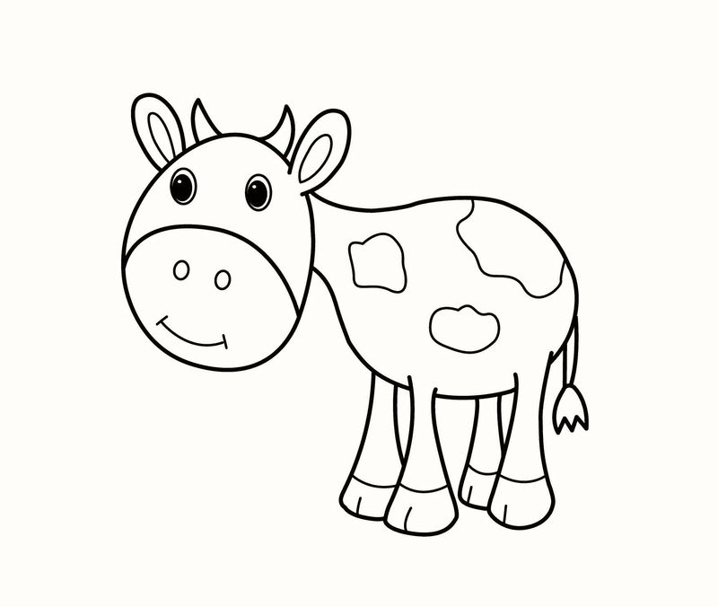 Cow Coloring Pages For Toddlers Free Template