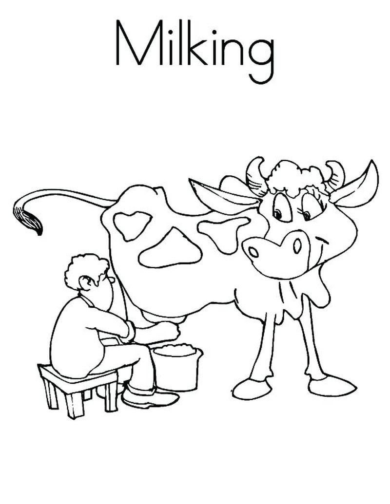Cow Coloring Pages Pdf