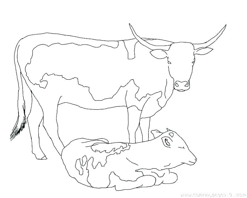 Cow With Bell Coloring Pages