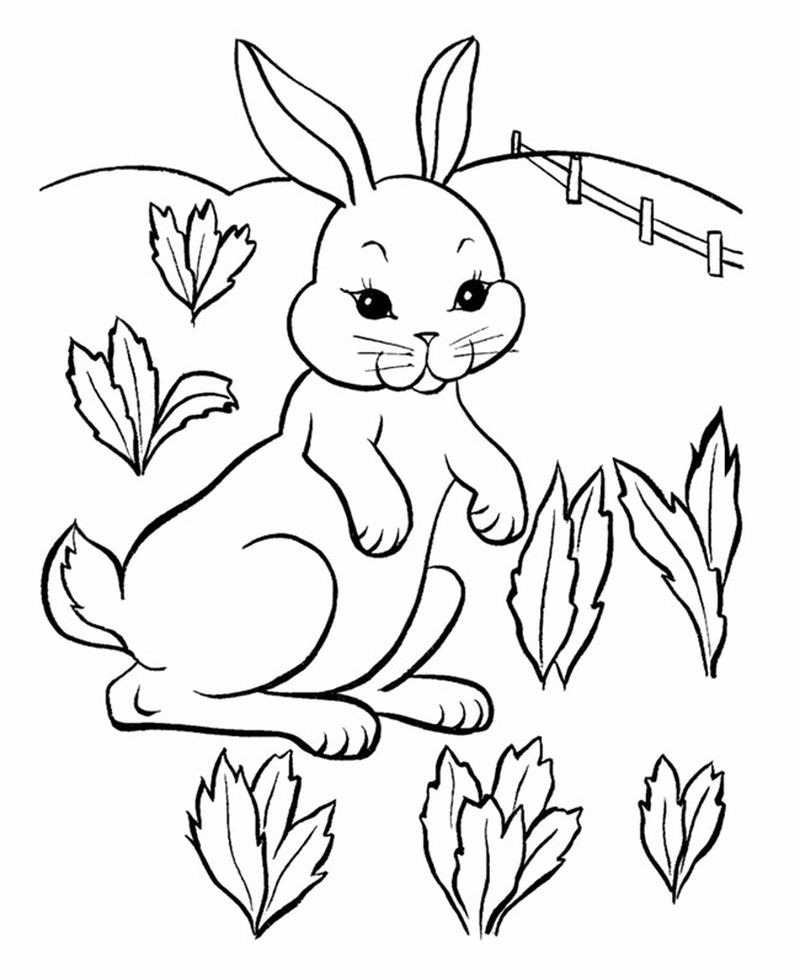 Crayola Easter Bunny Coloring Pages