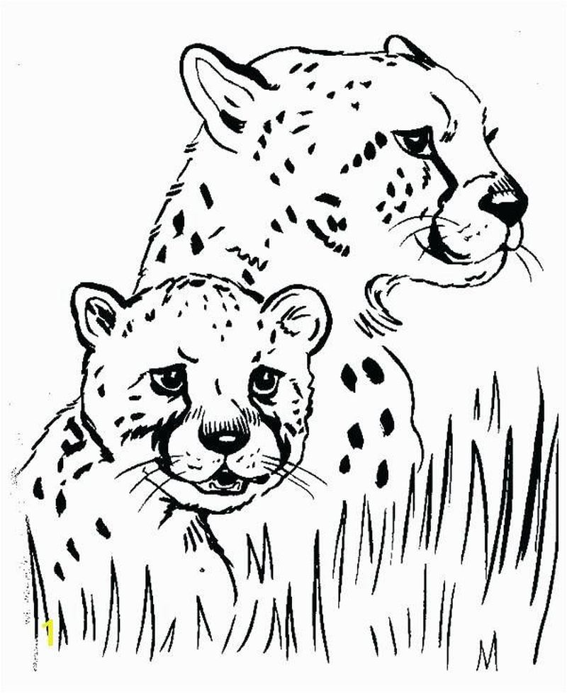 Cute Cheetah Coloring Pages