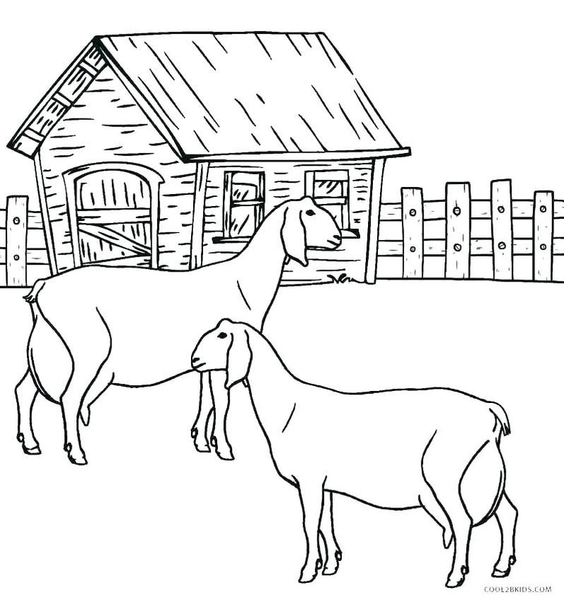 Cute Coloring Pages Of Baby Animals