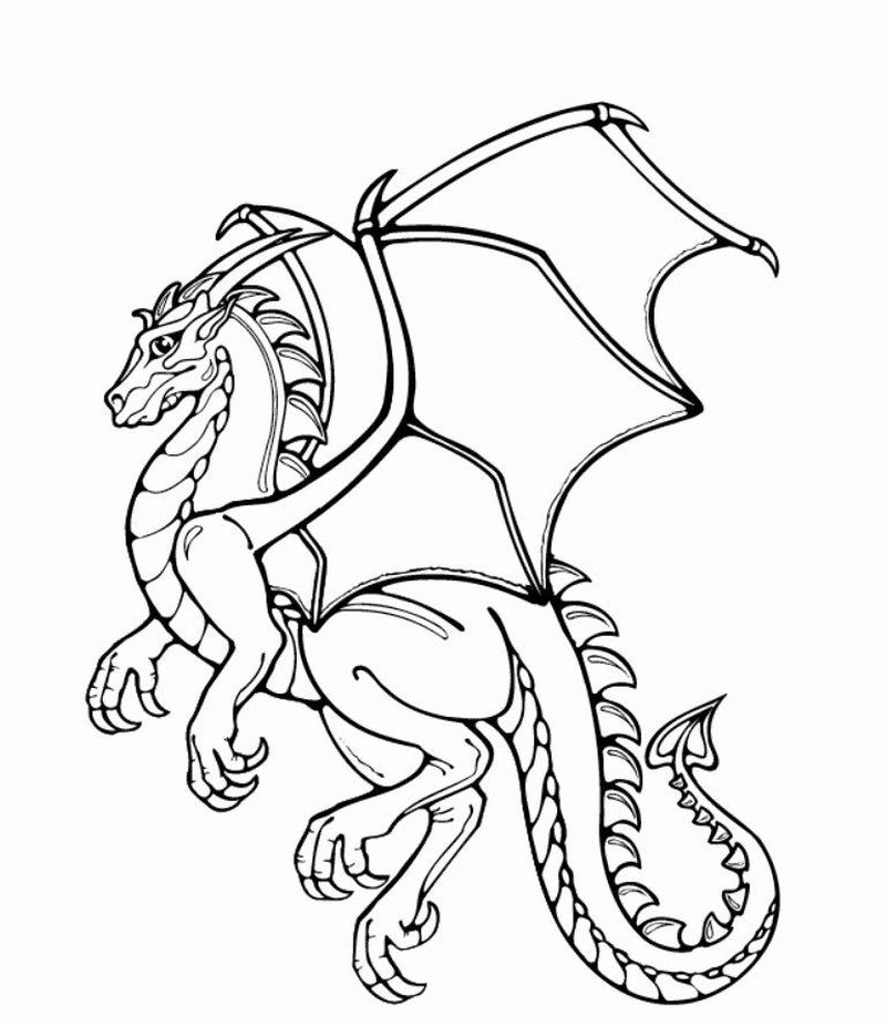 Cute Dragon Coloring Page