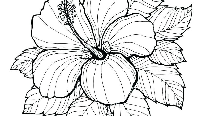 Cute Flowers Coloring Pages