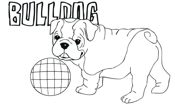 Cute French Bulldog Coloring Pages