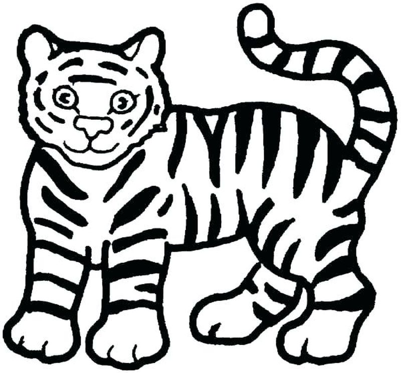Cute Tiger Cub Coloring Pages