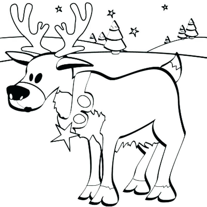 Deer Coloring Pages Hunting