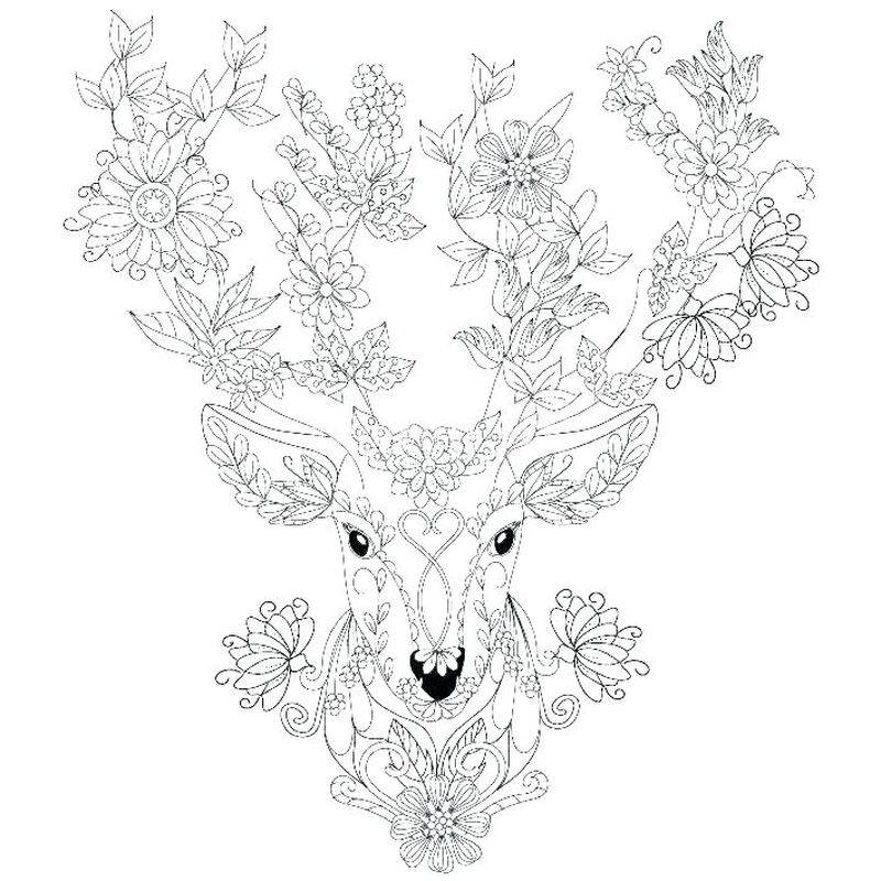 Deer Family Coloring Pages
