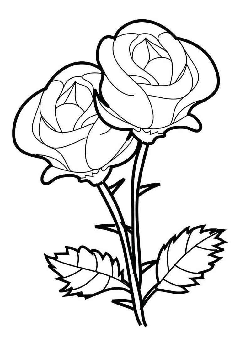 Different Flowers Coloring Pages