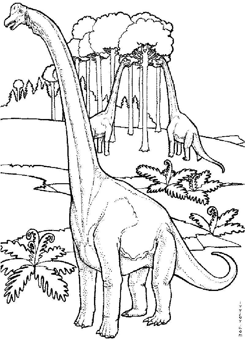 Dinosaur Coloring Pages For Adults