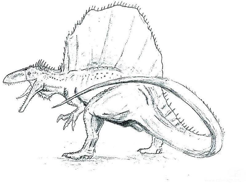 Dinosaur Coloring Pages With Names