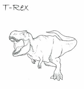 Dinosaur Faces Coloring Pages