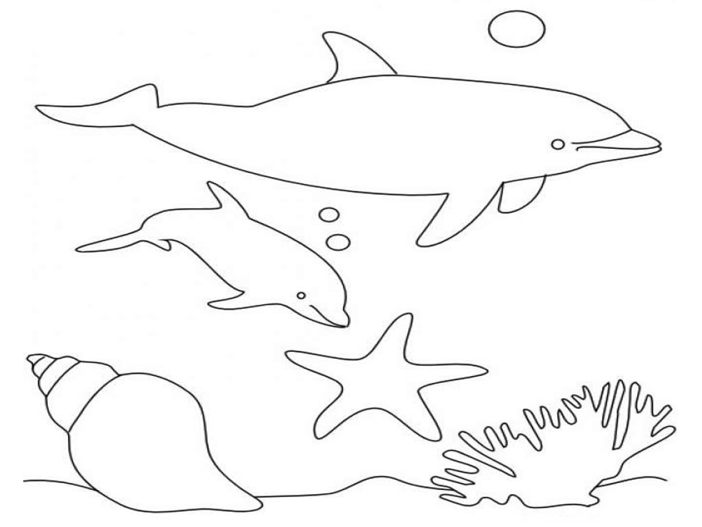 Dolphin Coloring Pages For Kids To Print