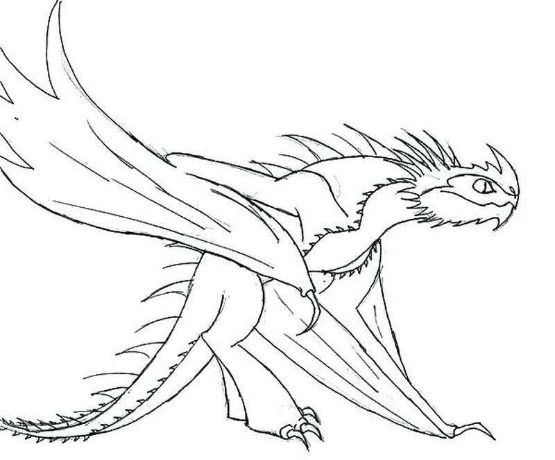 Dragon Coloring Pages For Adults Free