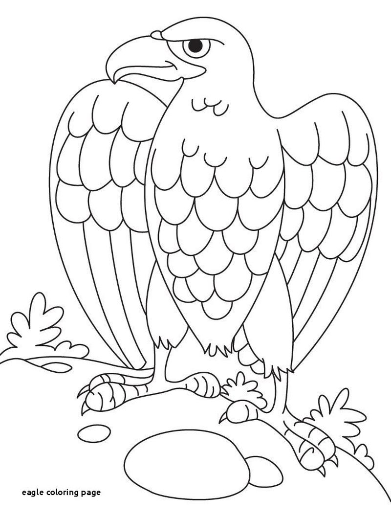 Eagle Owl Coloring Pages
