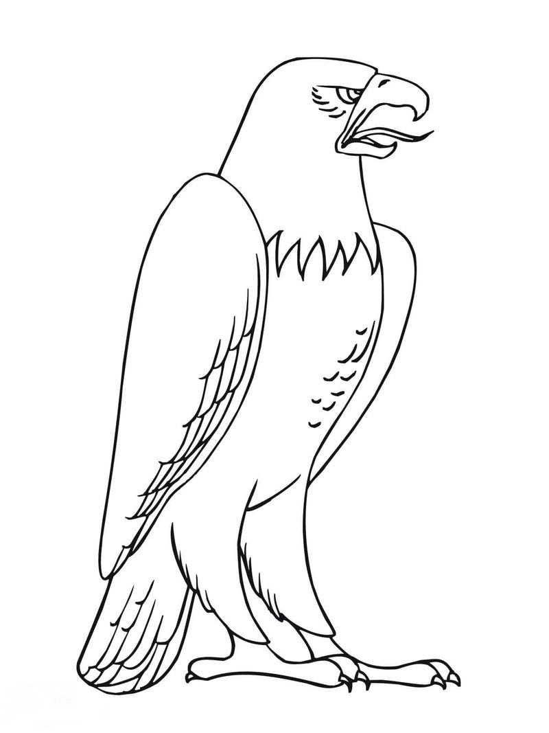 Eagle With Flag Coloring Pages