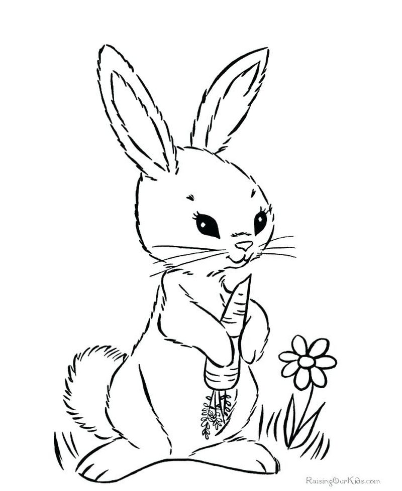 Easter Bunny With Carrot Coloring Pages