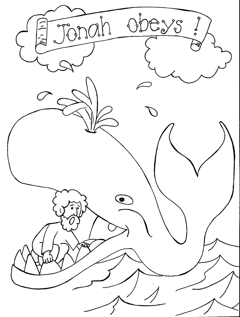 Educational Whale Coloring Pages