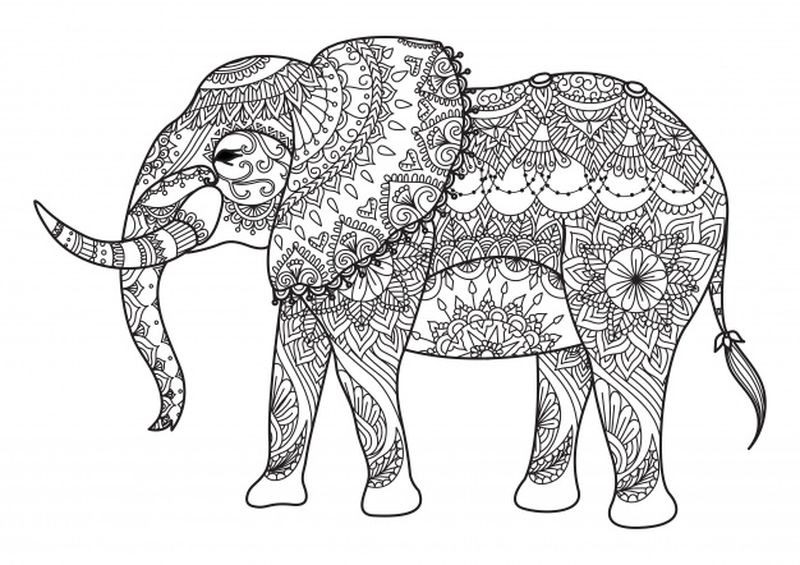 Elephant Coloring Pages Ideas