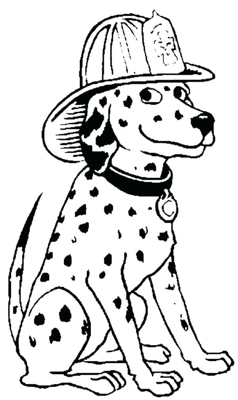 Firefighter Coloring Pages Pdf