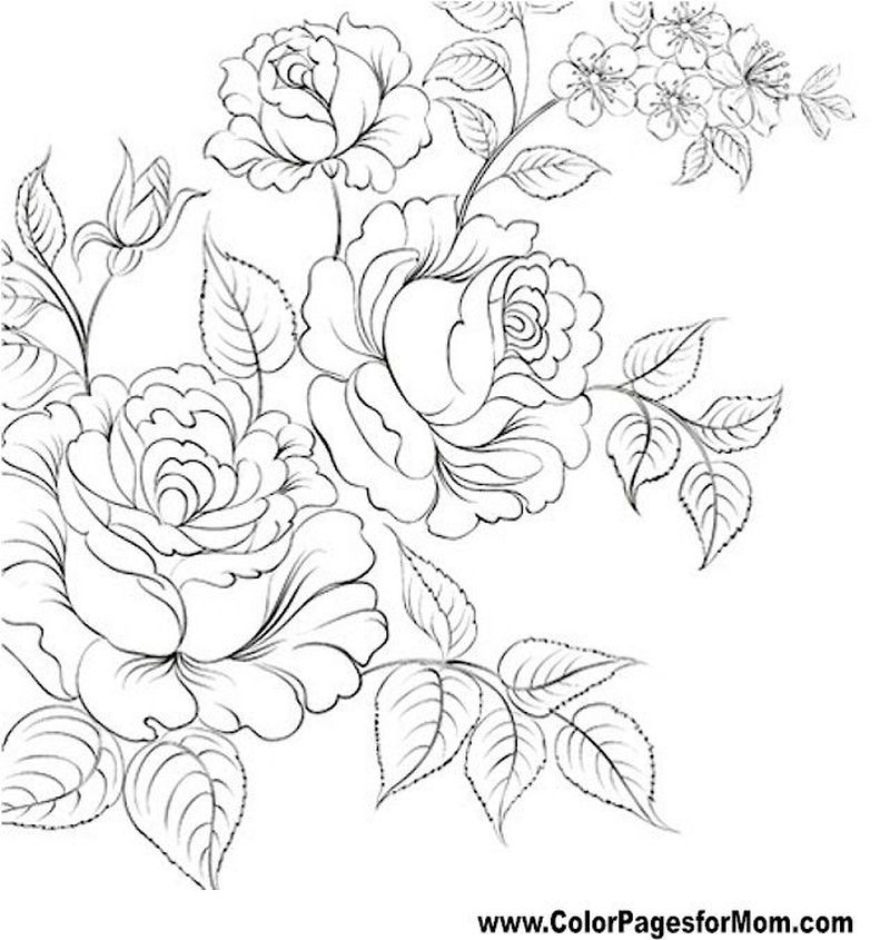 Flowers Coloring Pages For Adults Pdf