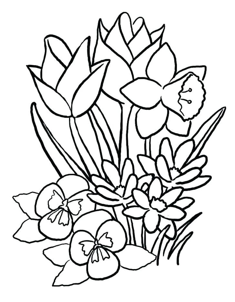 Flowers Coloring Pages For Baby