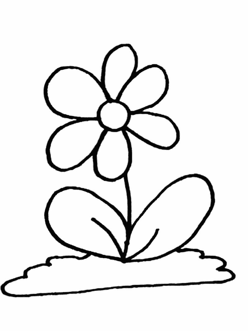 Flowers Coloring Pages Preschool