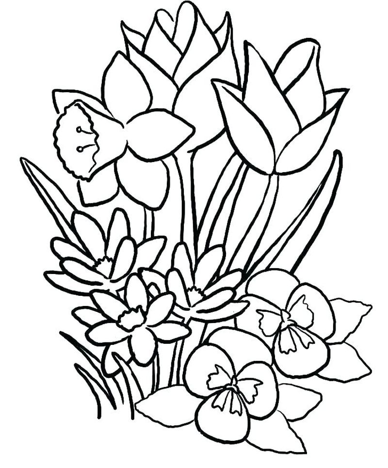 Flowers Coloring Pages Printables