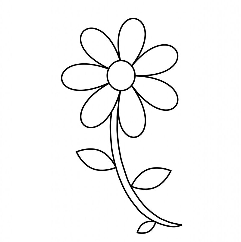 Flowers Colouring Pages Free