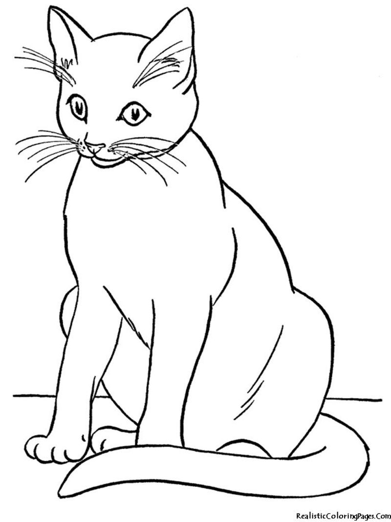 Free Coloring Sheets Cats And Dogs