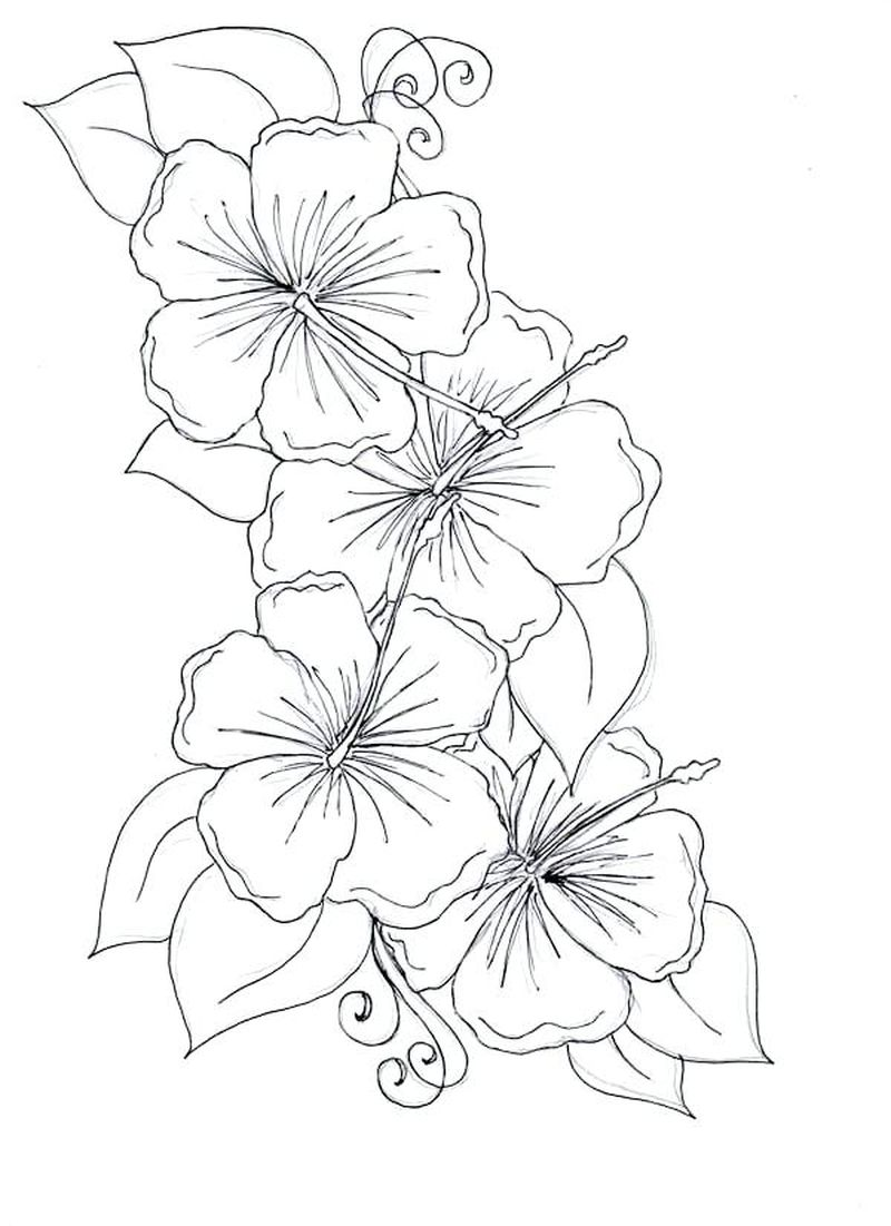 Free Flowers Coloring Pages For Adults