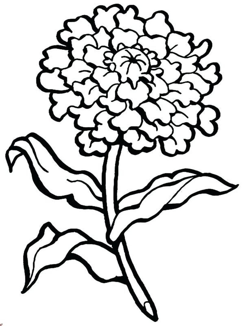 Free Mothers Day Coloring Pages For Grandma