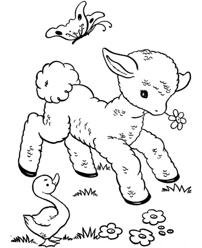 Free Printable Coloring Pages Of Animals