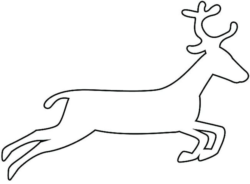 Free Printable Deer Coloring Pages For Adults