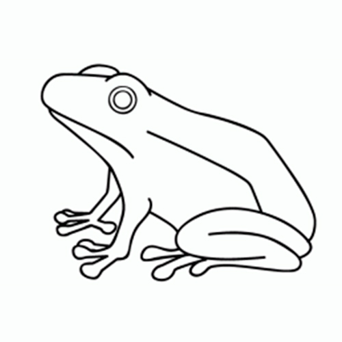 Free Printable Frog Coloring Pages For Adults