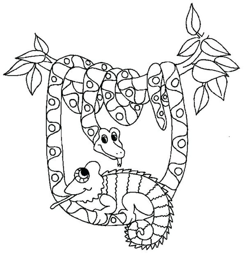 Free Snake Coloring Pages For Kids