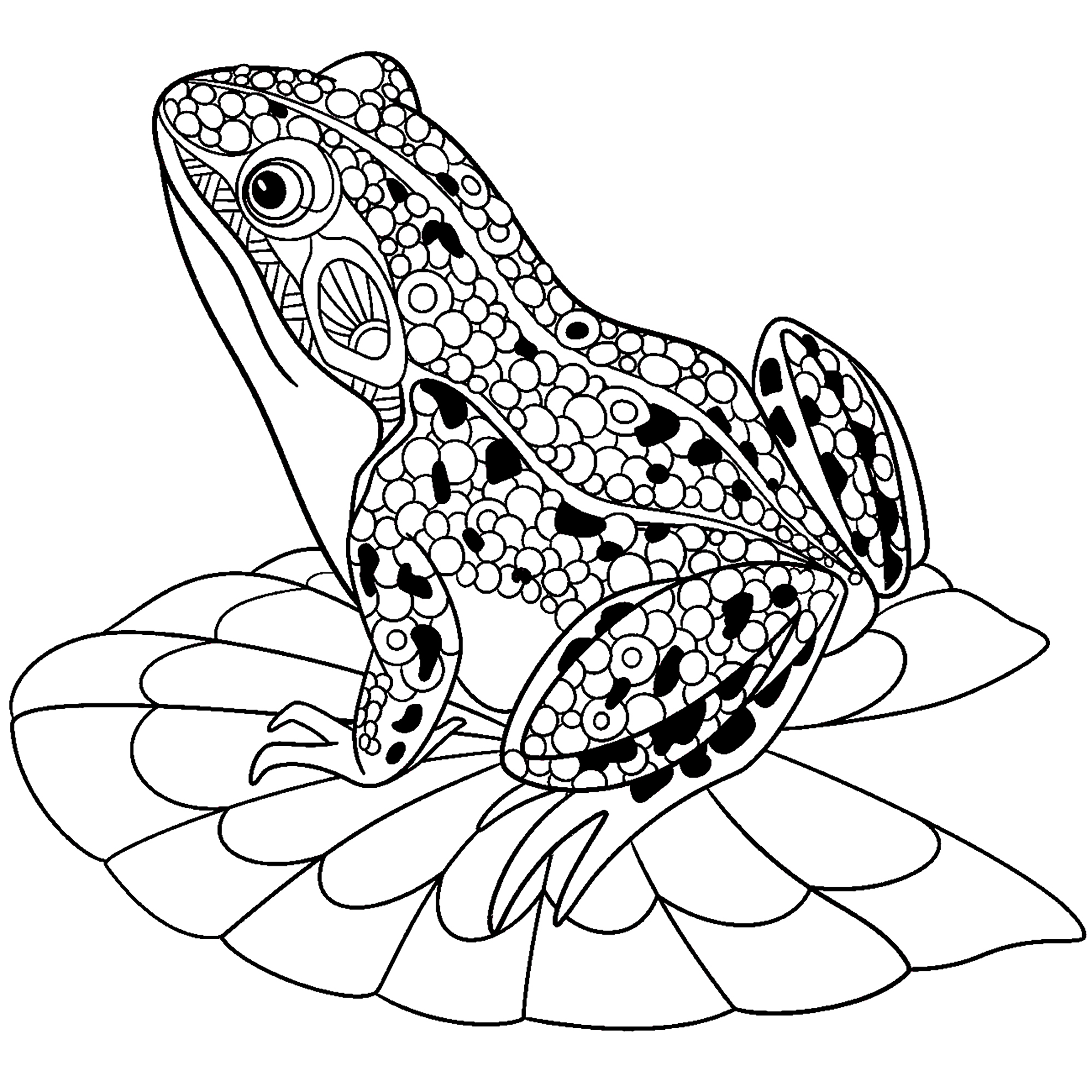 Frog Coloring Pages For Toddlers