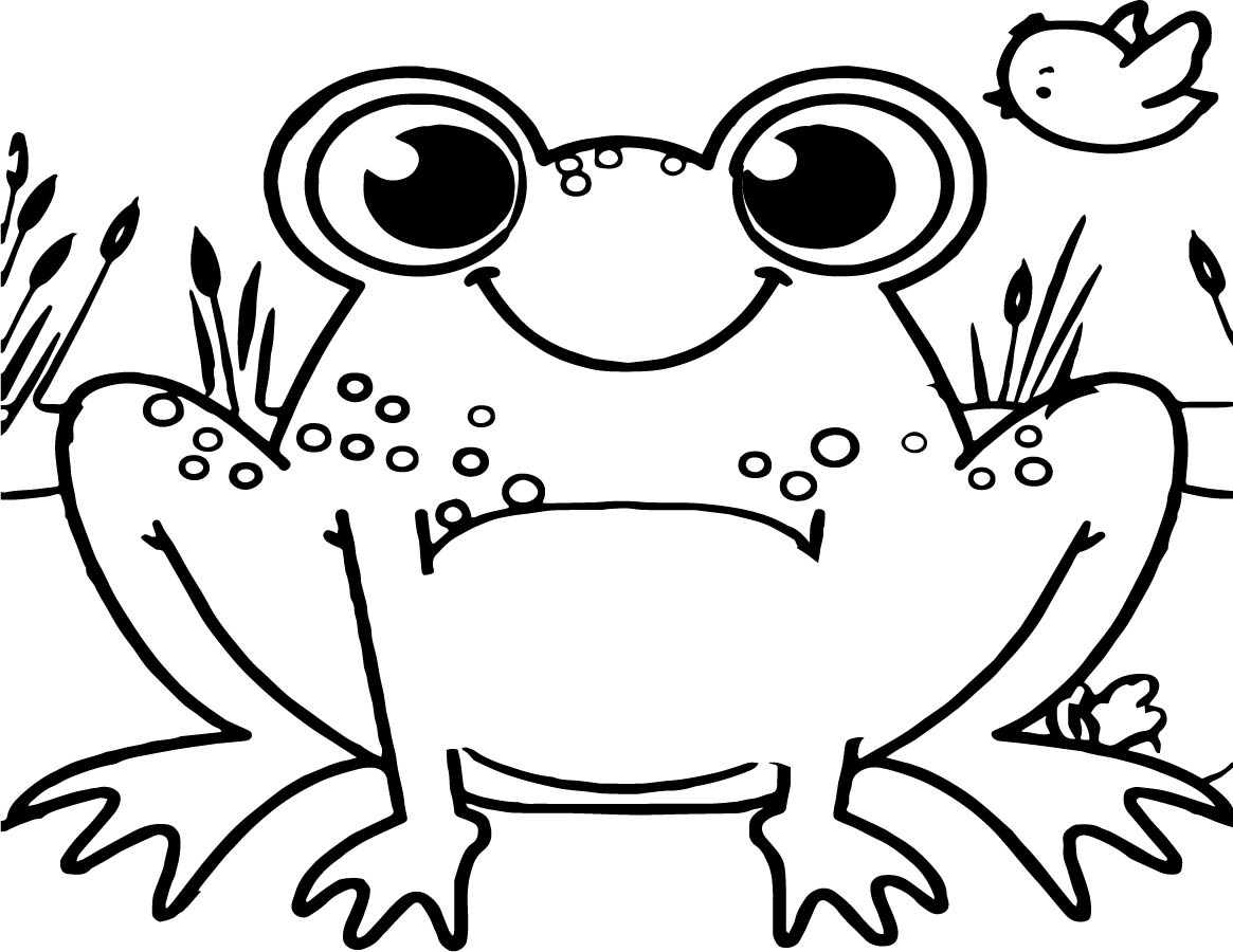 Frog On A Log Coloring Pages