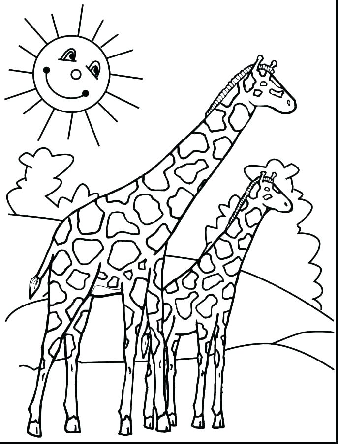 Giraffe Head Coloring Pages