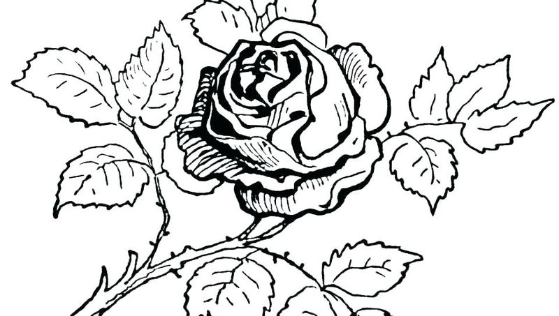 Grass And Flowers Coloring Pages