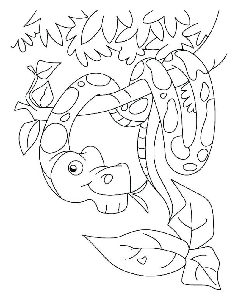 Grass Snake Coloring Page