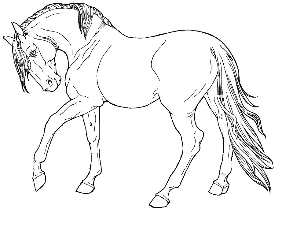 Horse Coloring Page Printable