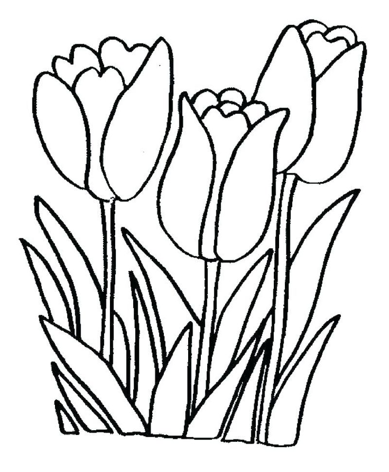 How To Draw Flowers Coloring Pages