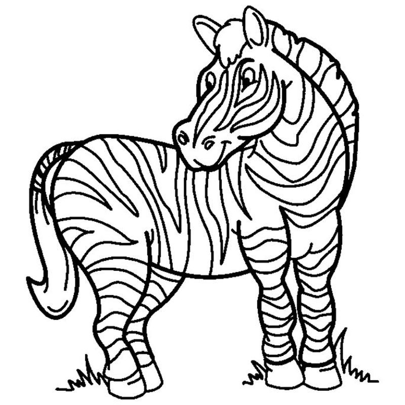 Images Zebra Coloring Pages