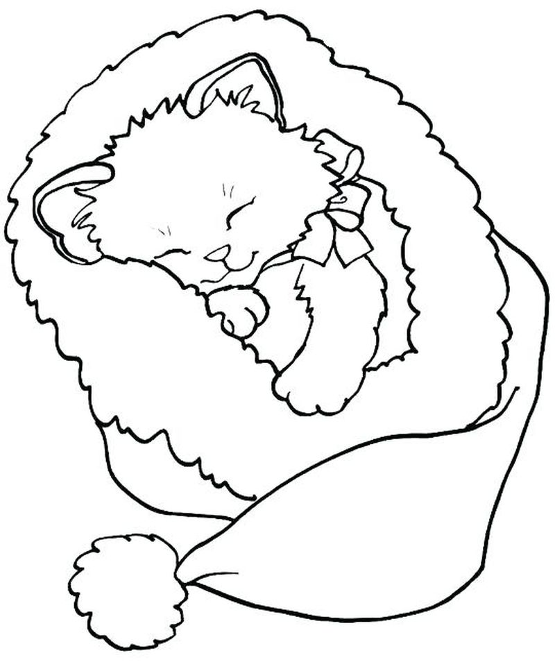 Kitten Coloring Pages For Kindergarten