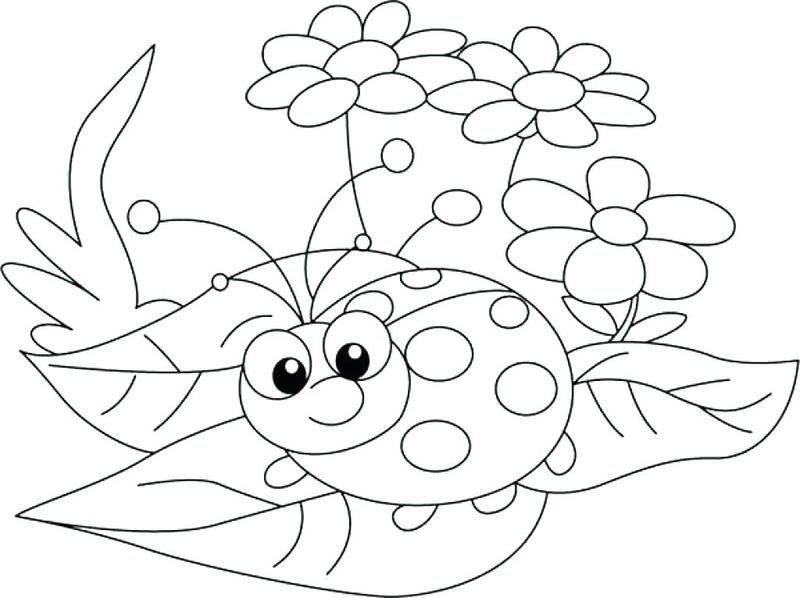 Ladybug Cartoon Coloring Pages